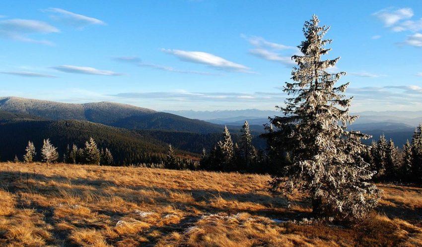 rysianka - Wakacje w górach