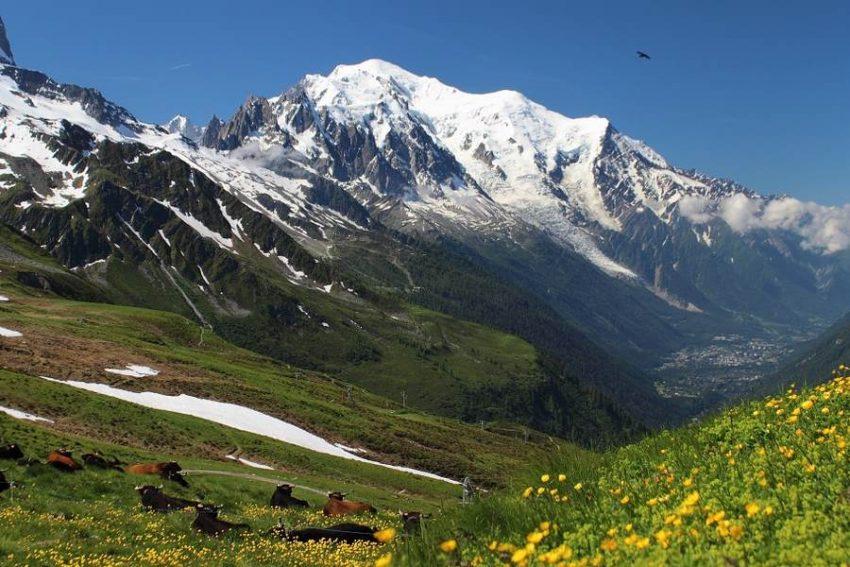 mont blanc latem - Wyprawa na Tour du Mont Blanc.
